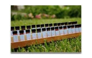 essentialoils-natural-options-aromatherapy